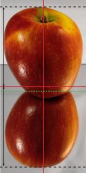 Apfel und Spiegelung mit Hilfslinien