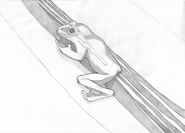 Zeichentechnik Wie Schattiere Ich Meine Bilder Richtig Mit Bleistift