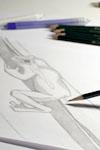 Titelbild Bleistiftzeichnung schattieren