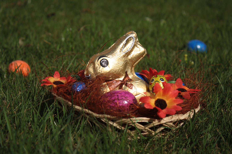 Kostenlose Ostern Zeichenvorlagen Osternest mit Schokohasen