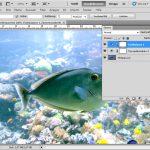 Photoshop: Fotos mit Tonwertkorrektur verbessern