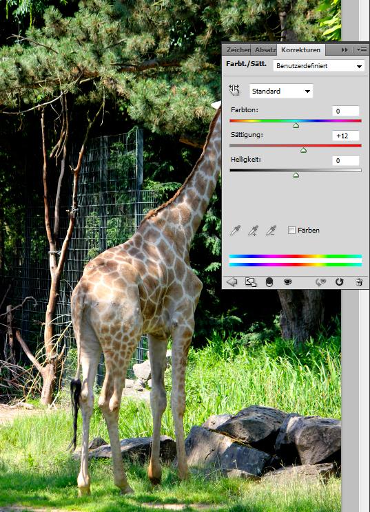 Giraffen-Foto: Farbton/ Sättigung