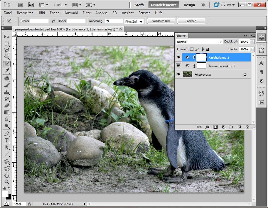 Foto eines Pinguins: Bearbeitungen