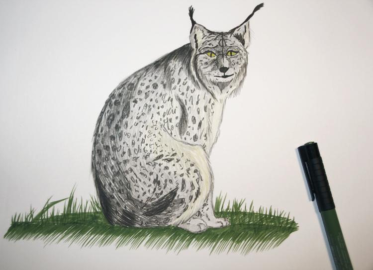 Zeichentusche: PITT artist pen