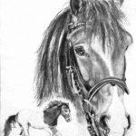 Zeichnung: Sarah K., 25 Jahre
