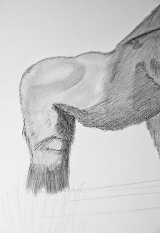 Gorilla Bleistiftzeichnung 13