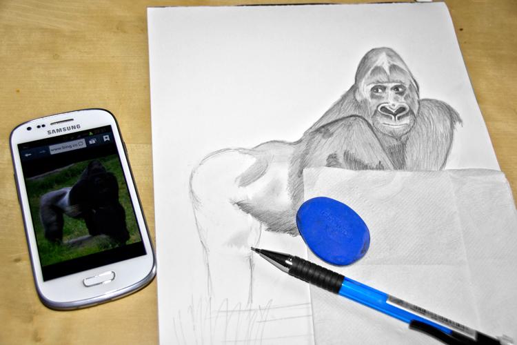 Gorilla Bleistiftzeichnung 6