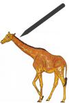 Giraffe-zeichnen_titel