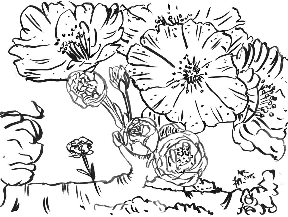 Kirschblüten zeichnen - Tuschekonturen