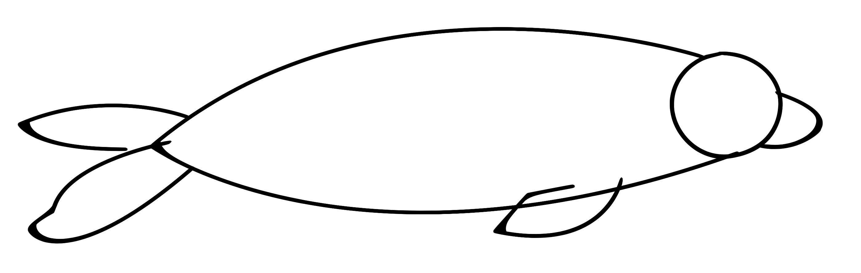 tutorial wie kann ich einen seehund zeichnen eine robbe. Black Bedroom Furniture Sets. Home Design Ideas