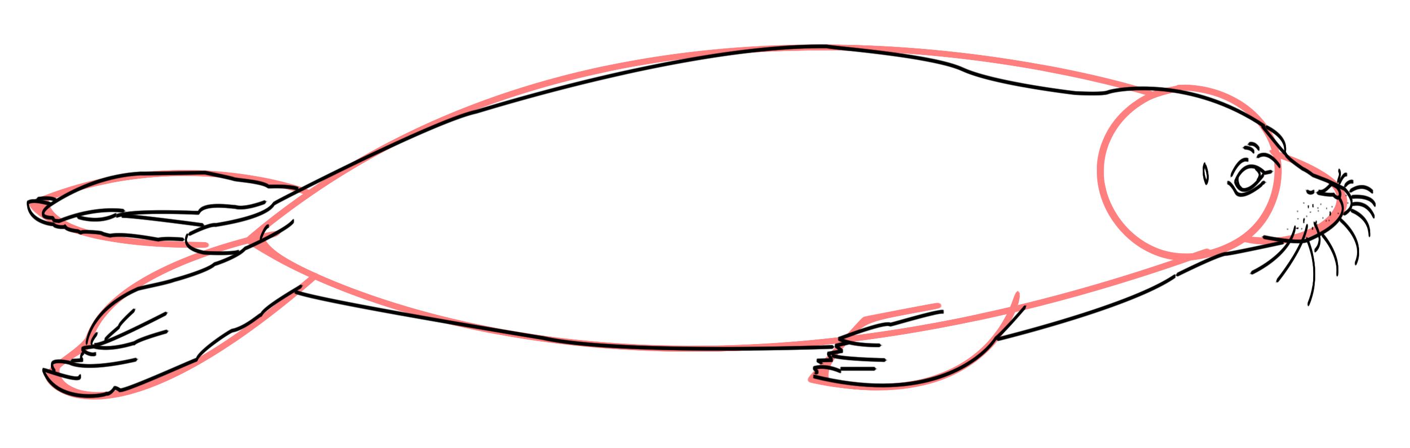 Robbe zeichnen Tutorial
