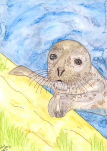 Fertige Seehund Aquarellmalerei