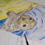 Seehund Zeichnung: Aquarellbuntstift aquarellieren 10