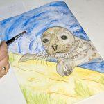 Seehund Zeichnung: Aquarellbuntstift aquarellieren 13
