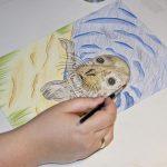 Seehund Zeichnung: Aquarellbuntstift aquarellieren 3