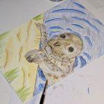 Seehund Zeichnung: Aquarellbuntstift aquarellieren 5