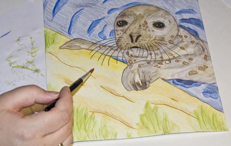 Meine ersten Erfahrungen mit Albrecht Dürer Aquarellbuntstifte