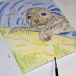 Seehund Zeichnung: Aquarellbuntstift aquarellieren 8