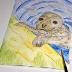 Seehund Zeichnung: Aquarellbuntstift aquarellieren 9