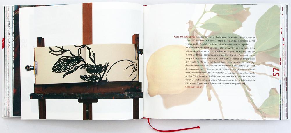 Rissler: Blick ins Buch - Alles hat zwei Seiten