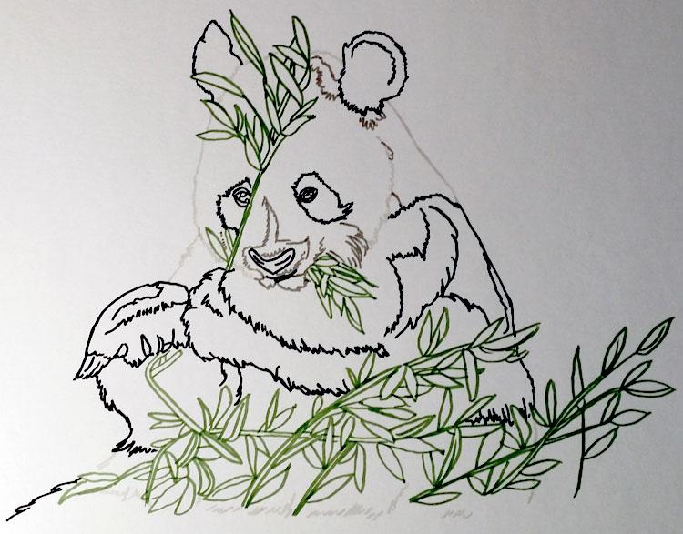 Pandabär - Bunte Konturen