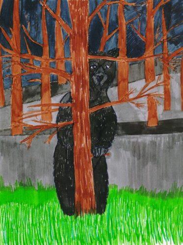 Bär hinter einem Baum - Kolorierung mit Tuschestift