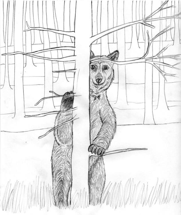 Tier ABC: B wie Bär - Bär zeichnen und kostenlose Fotovorlagen