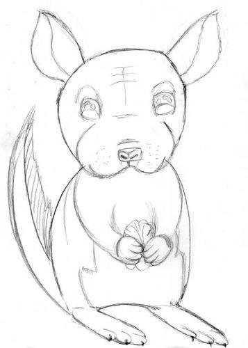 Chinchilla Zeichnung mit Bleistift