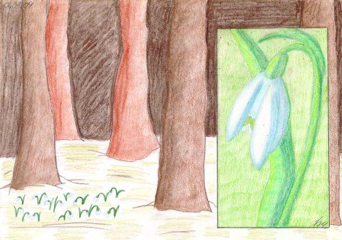 2009 - Pastellkreide Schneeglöckchen
