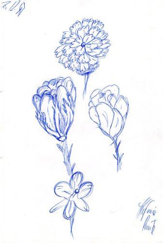 1997 - Verschiedene Blumen