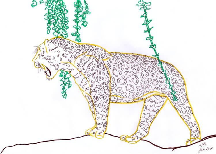 Jaguar Konturen TOUCH Liner
