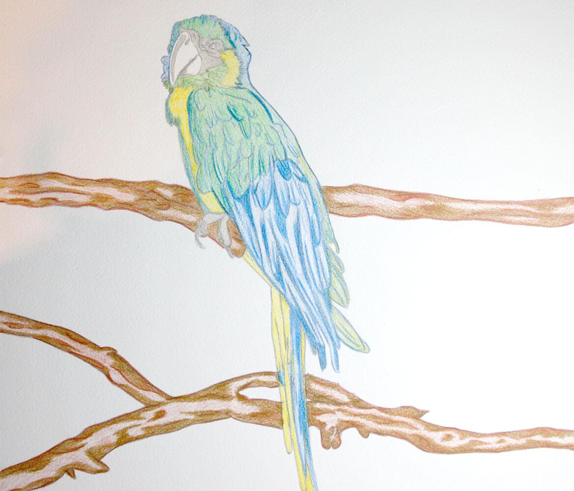 Aquarellmalerei: Papagei Schritt für Schritt gemalt