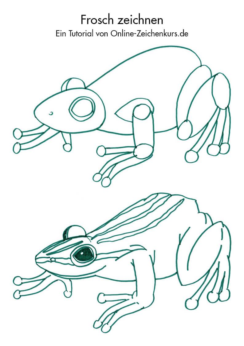 Frösche und Kröten zeichnen