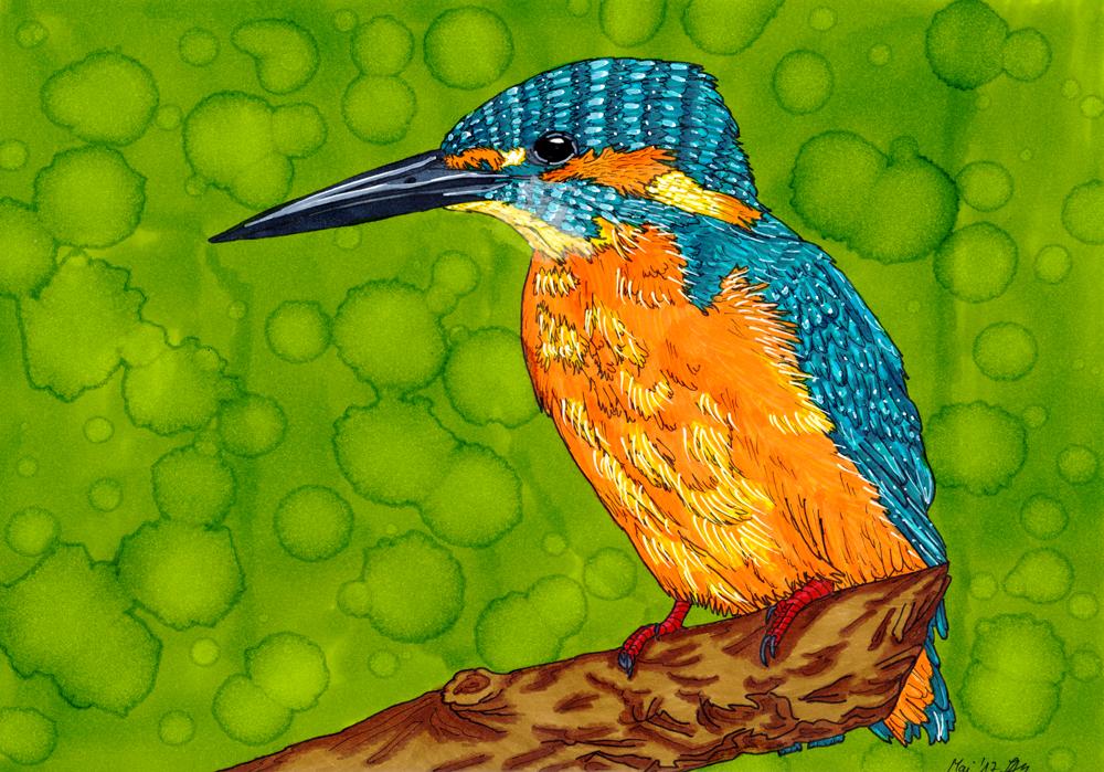 Eisvogel mit Fluxor Markern koloriert
