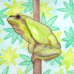 Frosch Aquarell malen mit Tuschebuntstiften