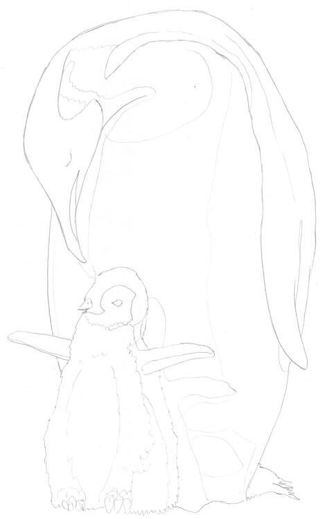 Tier ABC: Pinguin zeichnen - Skizze