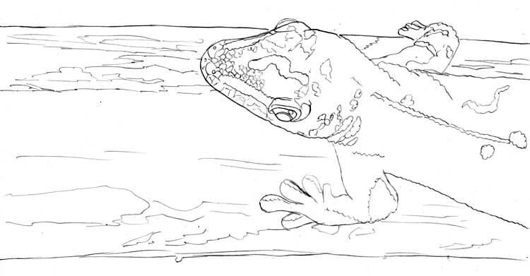 Gecko zeichnen und malen - Bleistiftzeichnung