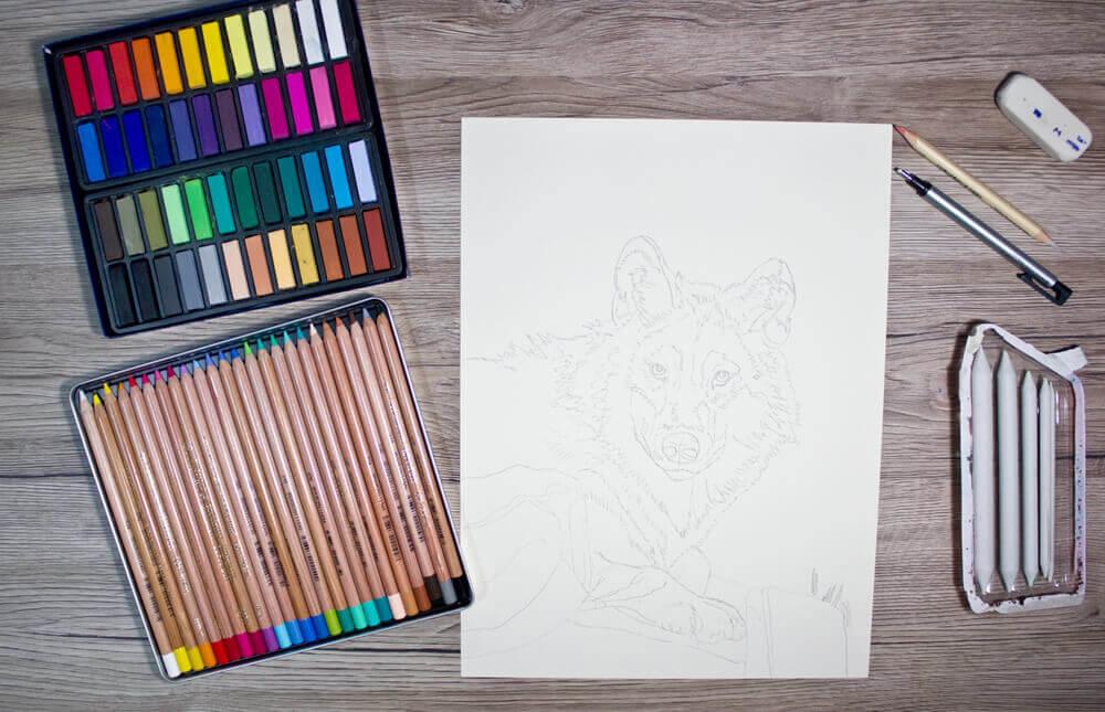 Wolf zeichnen - Pastellmalerei 1