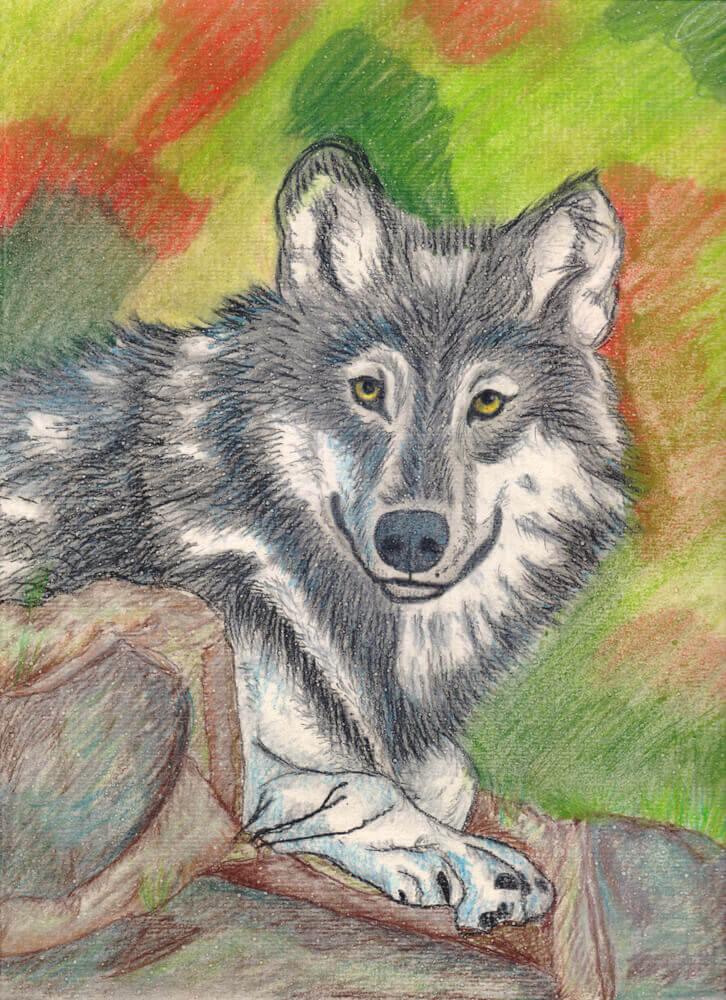 Fertige Wolf Pastellmalerei