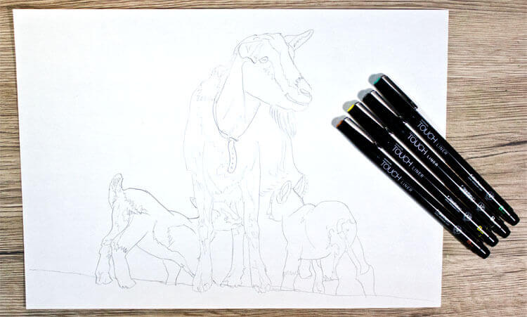 Ziege zeichnen Bleistiftskizze