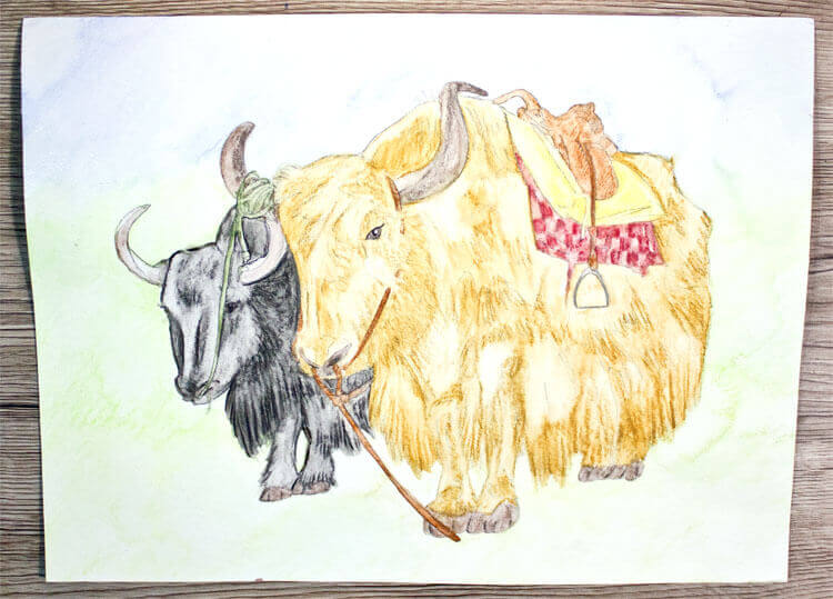 Fertiges Yak Aquarell