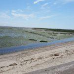 Fotovorlage zum Abzeichnen: Nordsee Sandstrand 2