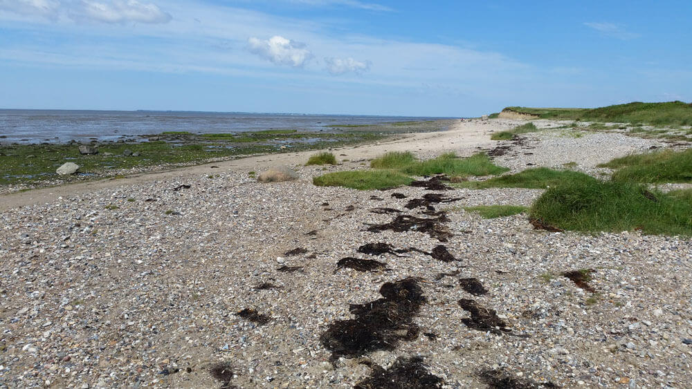 Fotovorlage zum Abzeichnen: Nordsee Sandstrand