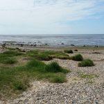Fotovorlage zum Abzeichnen: Nordsee Sandstrand 4