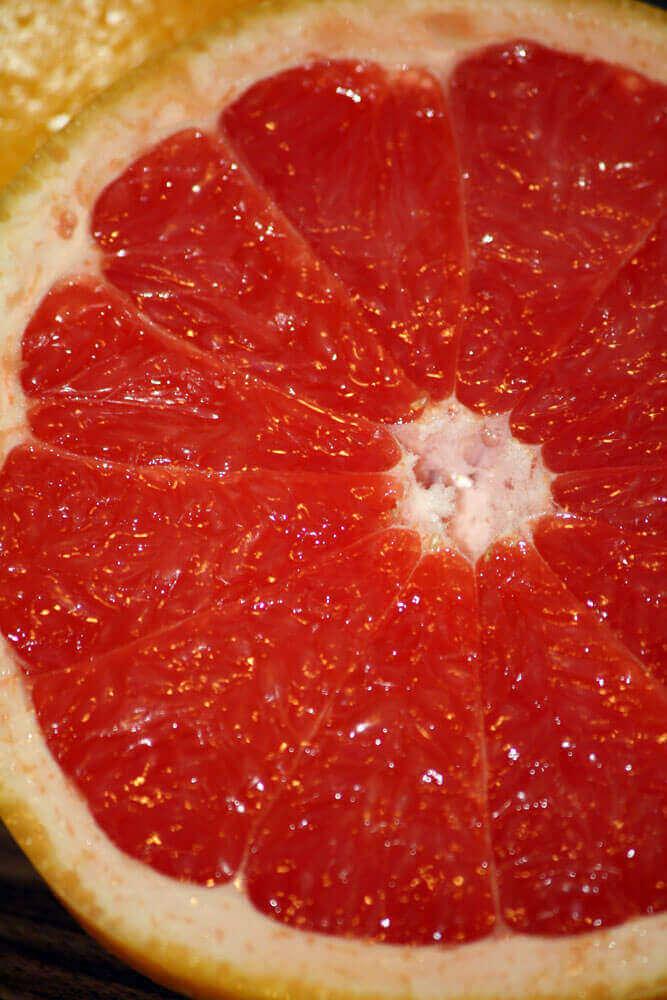 Fotovorlage zum Abzeichnen Grapefruit