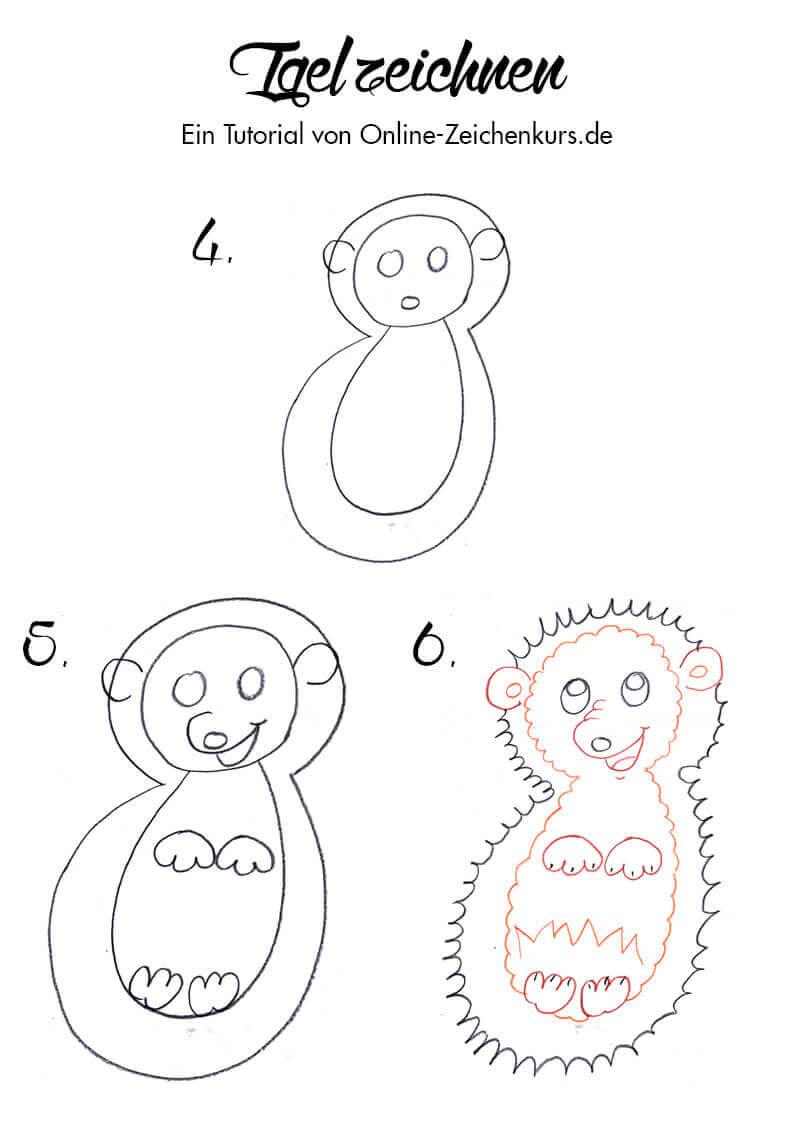 Waldtiere Zeichnen Lerne Eichhornchen Igel Eule Und Fuchs Zeichnen