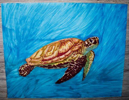 Meeresschildkröte malen mit Brushmarker 6