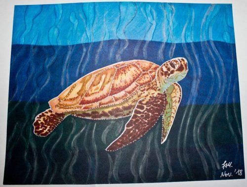 Meeresschildkröte malen mit Brushmarker 9