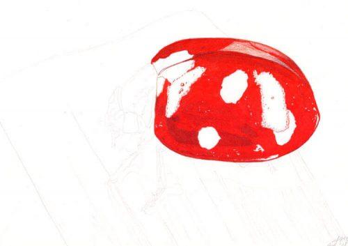 Marienkäfer Buntstiftmalerei 5 mit Prismacolor