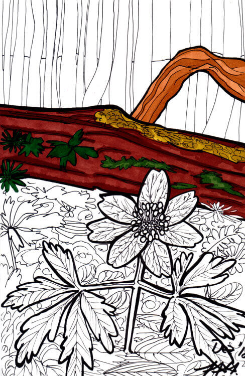 Postkarte Waldblume Touch Twin Markerkolorierung 2